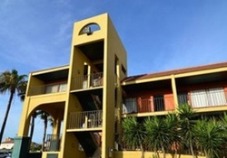 pet friendly hotel in south padre island, texas
