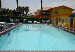 dog friendly hotel in south padre island, texas
