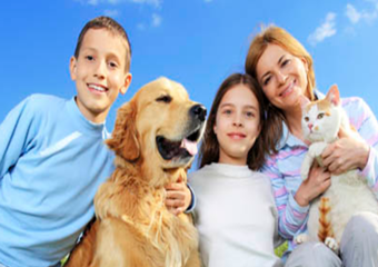 south padre island pet friendly veterinarian