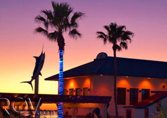 delicious seafood from sea ranch restaurant and bar south padre pet friendly restaurants